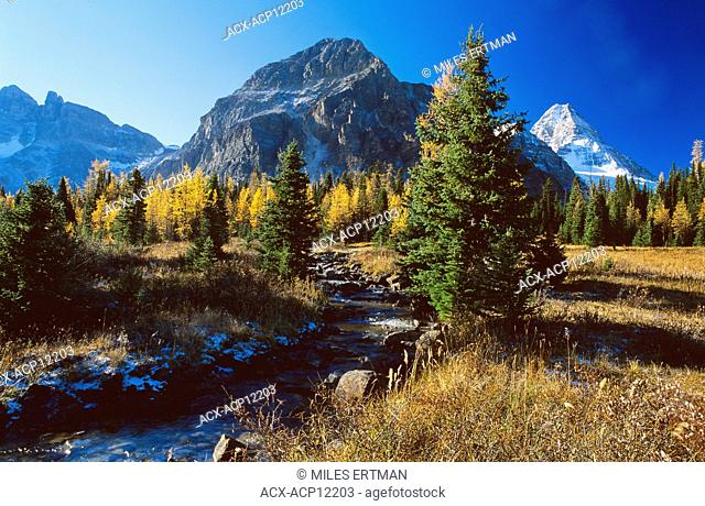Mount Assiniboine Provincial Park in Fall, British Columbia, Canada