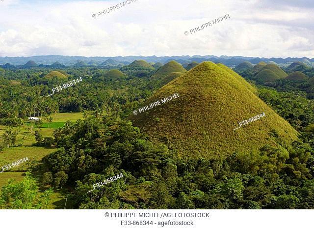 Chocolate Hills, Bohol, Visayas islands, Philippines