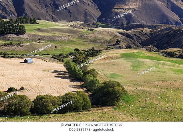 New Zealand, South Island, Otago, Cardrona-area, landscape from the Crown Range Road, highest asphalt road in NZ, 1076 meters