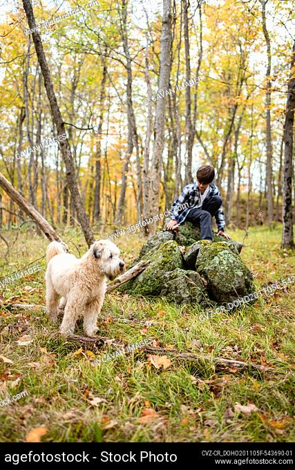 Young boy climbing on a rock in the woods with his dog on a fall day