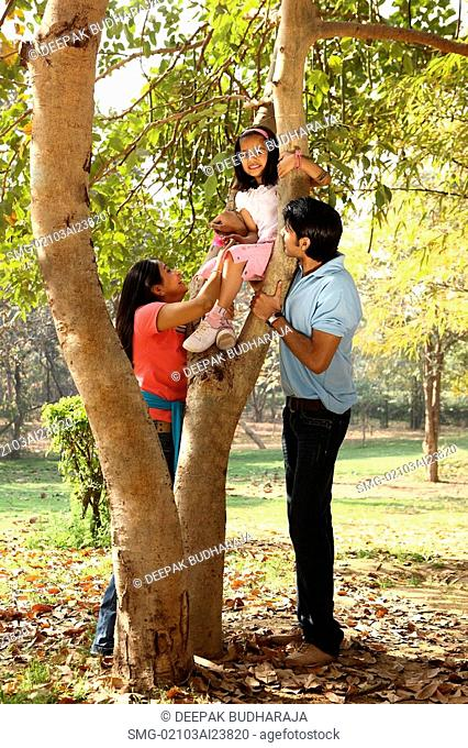 Family at park, daughter up tree
