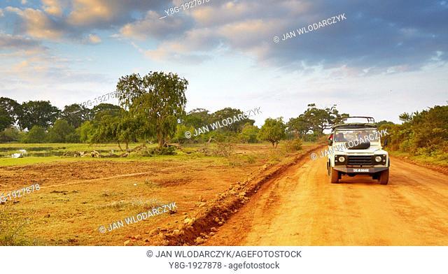 Sri Lanka - Yala National Park, jeep safari, protected area in Sri Lanka