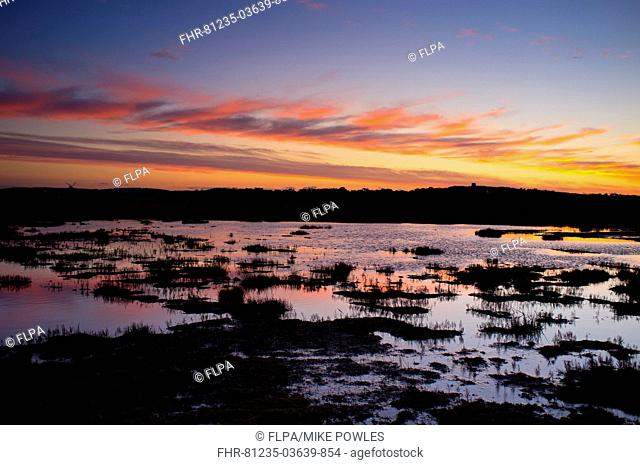 View of coastal marshland habitat and distant windmill at sunset, Cley Mill, Westbank Marsh, Cley-next-the-sea, Norfolk, England, january