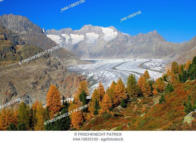 Switzerland, Europe, Aletsch Glacier, Wannenhorn, Wannenhorner, autumn, Aletsch, Aletsch area, UNESCO, World Heritage