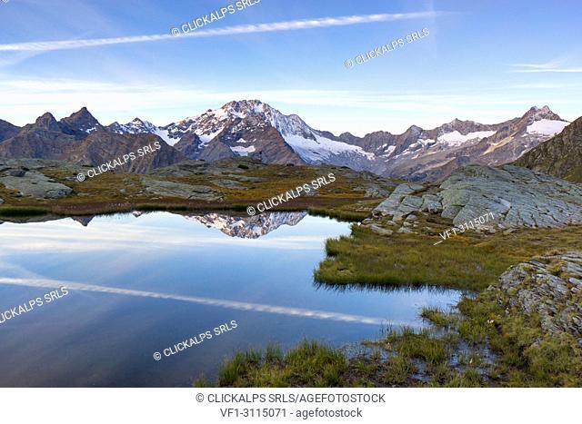 Mount Disgrazia reflected in the lake of Alpe Fora, Chiareggio, Valmalenco, Province of Sondrio, Lombardy, Italy