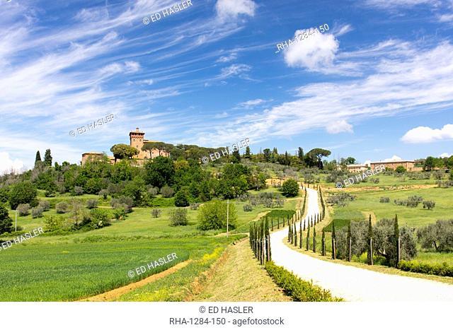 Winding path and cypress trees leading to Palazzo Massaini under blue skies near Pienza, Tuscany, Italy, Europe