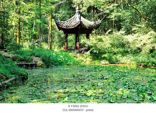 Pavilion by lotus pool, surrounded by trees, Hangzhou, China