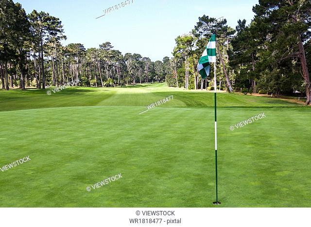 Golf flag on the grass