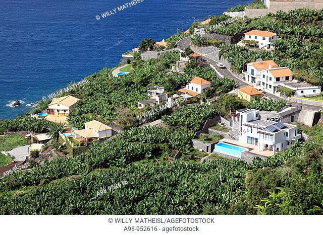 typical landscape with houses at the south coast of Madeira, Atlantic Ocean, Portugal, Europe