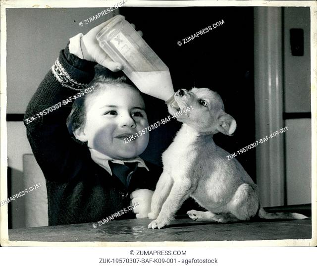 Mar. 07, 1957 - 7-3-57 Pup abandoned in telephone kiosk finds a new home ?¢'Ǩ'Äú Goldie, the pup abandoned in a telephone box a fortnight ago
