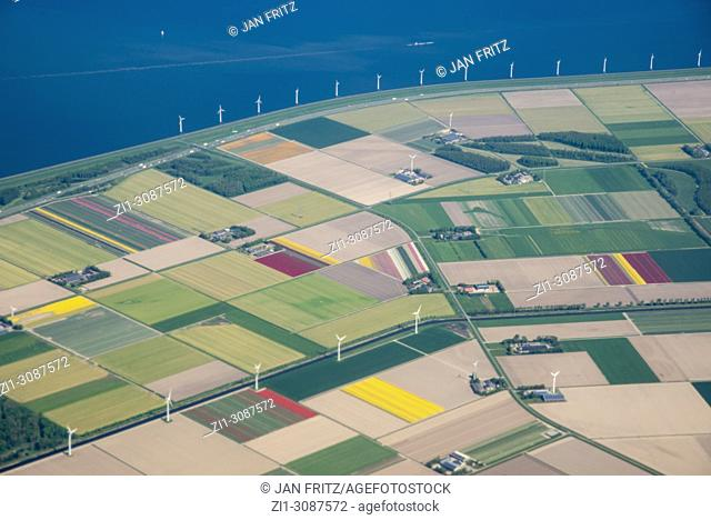 aerial of Flevolpolder with flowerfields and farmfields in Holland
