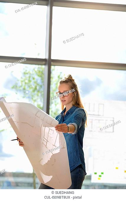 Woman contemplating plans by glass wall