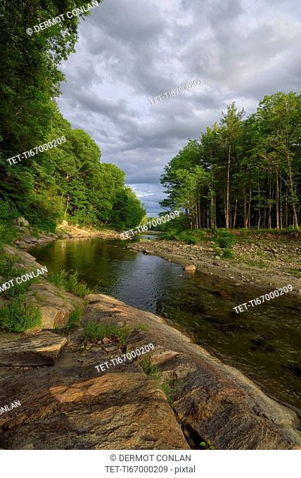 View of Williams River