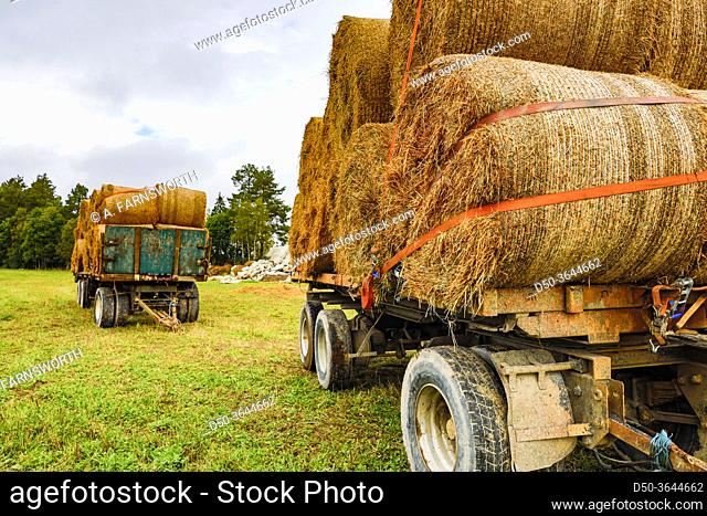 Frykerud, Sweden Hay fields in the province of Varmland