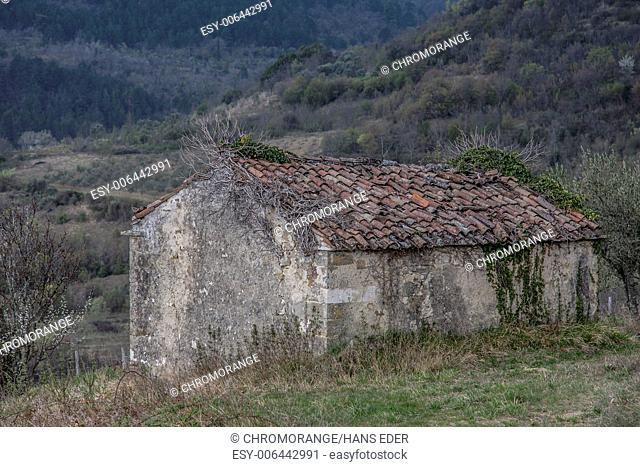 Old stone cottage in an olive grove standing