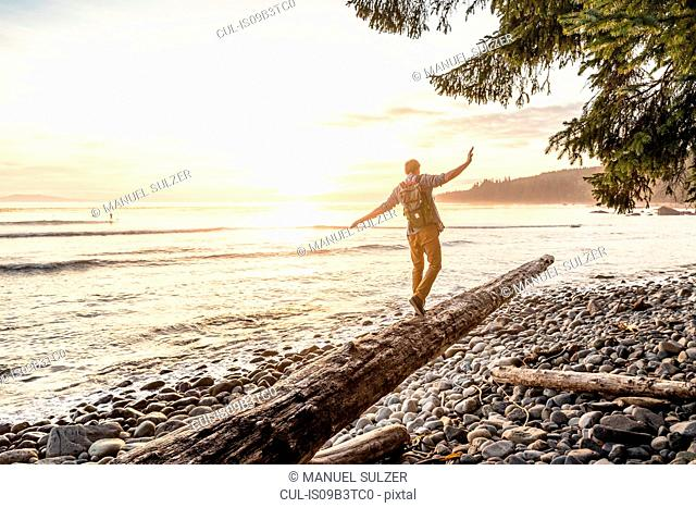 Man balancing on driftwood log on beach in Juan de Fuca Provincial Park, Vancouver Island, British Columbia, Canada