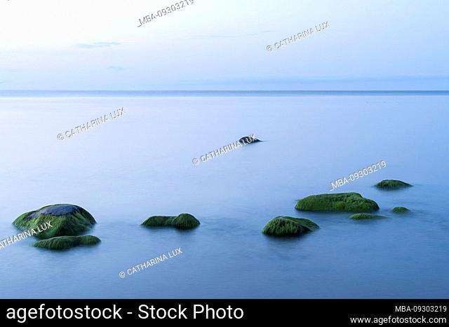 Estonia, north coast, Baltic Sea, Liimala beach, mossed stones, long exposure