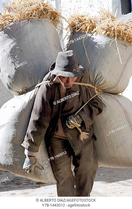 Man carrying sacks of straw in Gyantse, Tibet