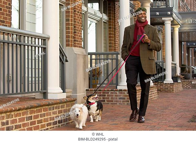 African American man walking dogs on city sidewalk
