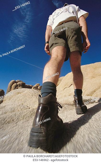 Hiker. Joshua Tree National Park. California. USA