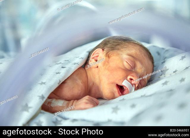 Hospitalized baby, Neonatal pediatrics, Medical care, Neonate Intensive care Unit, UVI, ICU, Hospital Donostia, San Sebastian, Gipuzkoa, Basque Country, Spain