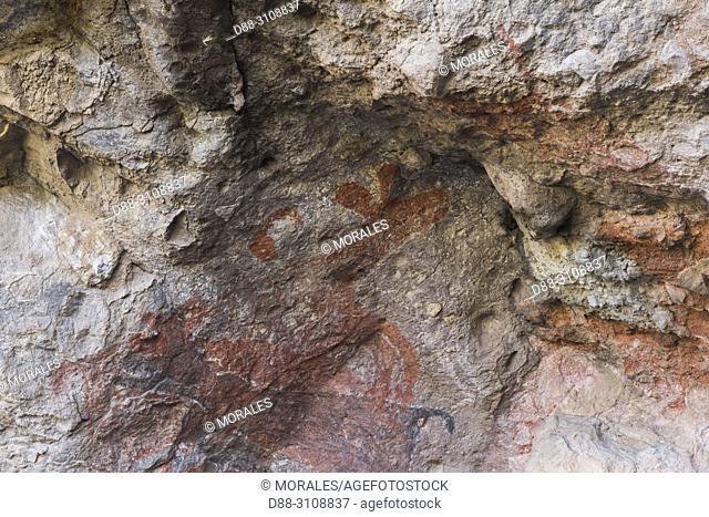Central America, Mexico, Baja California Sur, Sierra San Francisco, The Cueva del Ratón, cave paintings