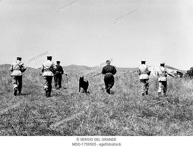 Carabineers are combing in the countryside with dog units. Carabineers are combing in the countryside with dog units near the wood of Ficuzza