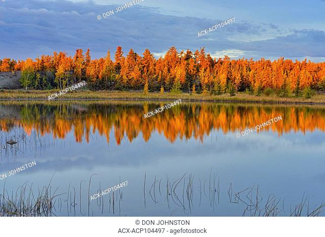 Dawn skies reflected in a small nameless lake, Yellowknife, Northwest Territories, Canada