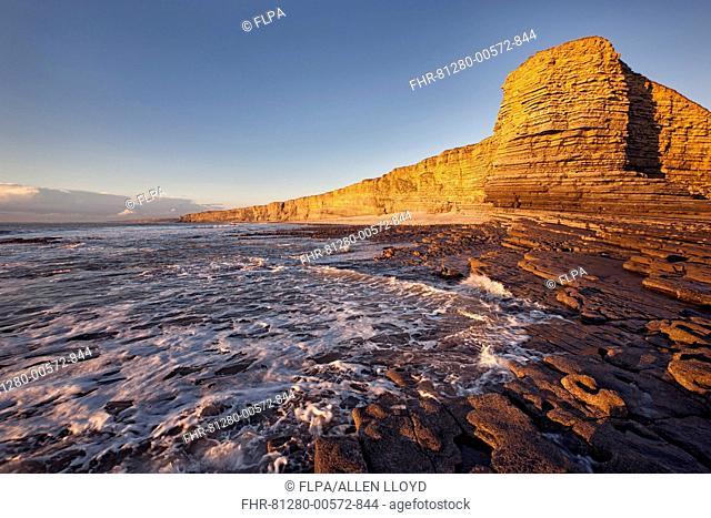 View of limestone cliffs in evening sunlight, Nash Point, Glamorgan Heritage Coast, Vale of Glamorgan, Wales, November