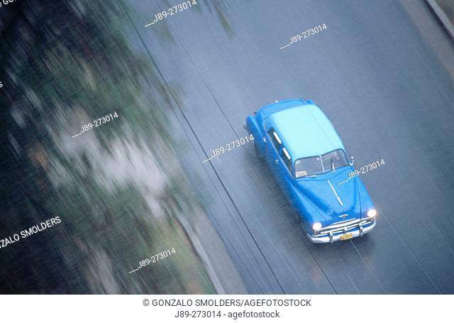 Classic car on Presidentes Avenue. Quartier El Vedado. Havana. Cuba