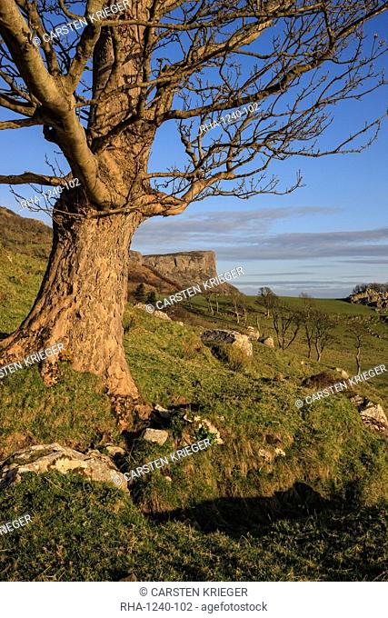 Murlough Bay, Fair Head, County Antrim, Ulster, Northern Ireland, United Kingdom, Europe