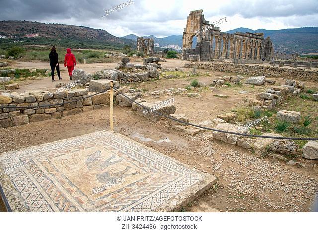 ruins at roman Volubilis in Maroc