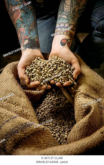 Caucasian man holding raw coffee beans