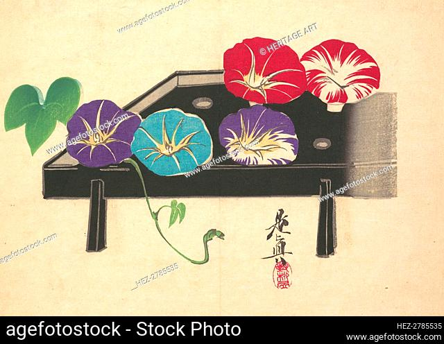 Morning Glories, ca. 1860., ca. 1860. Creator: Shibata Zeshin