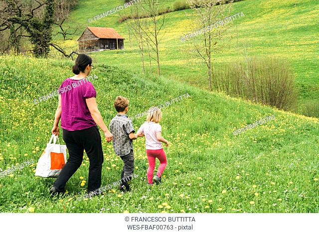 Mother with two children walking on meadow in the countryside
