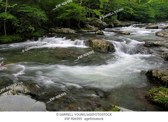 Little Pigeon River Cascades in Greenbrier of the Great Smoky Mountains in Tennessee, USA