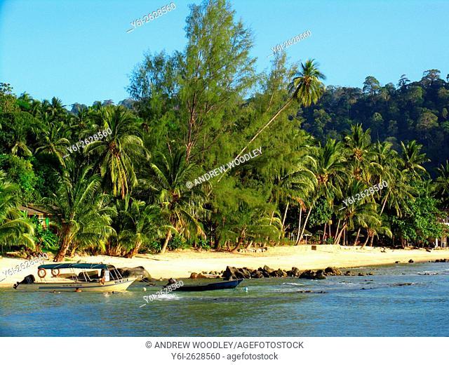 Salang Beach Tioman Island Malaysia