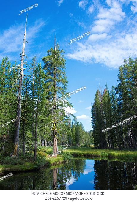 A beautiful mountain scene in the high Sierra