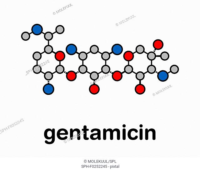 Gentamicin antibiotic drug (aminoglycoside class) molecule. Stylized skeletal formula (chemical structure). Atoms are shown as color-coded circles with thick...