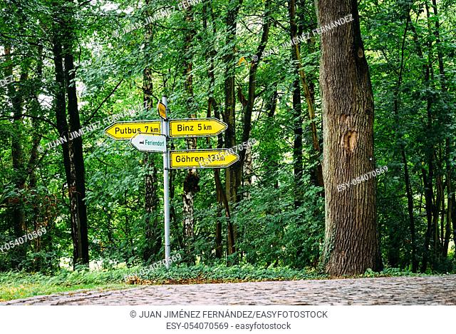 Crossroads with yellow sign posts in road through beech woodland in Rugen Island. Germany