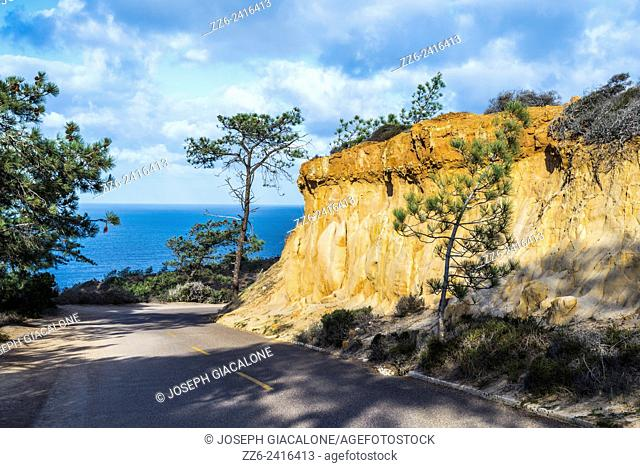 Sandstone cliff and paved road running through the Torrey Pines State Natural Reserve, San Diego, California, United States