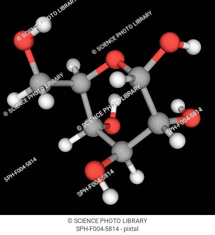 L-glucose, molecular model. Organic compound and an enantiomer of the more common D-glucose, from which it is indistinguishable in taste