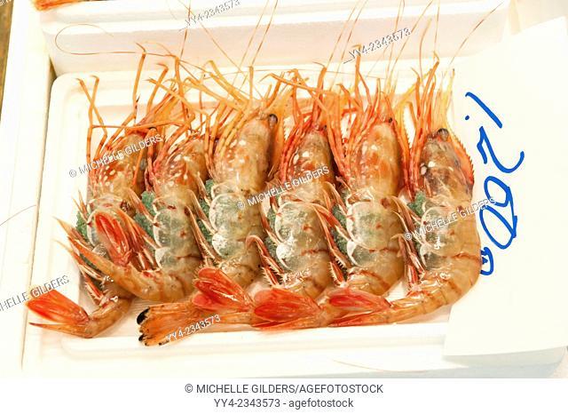 Large fresh shrimp for sale, Tsukiji Fish Market, Tokyo, Japan