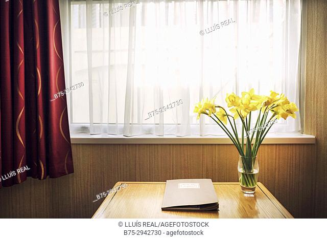 Table beside window with book and vase with yellow flowers inside house. London, England