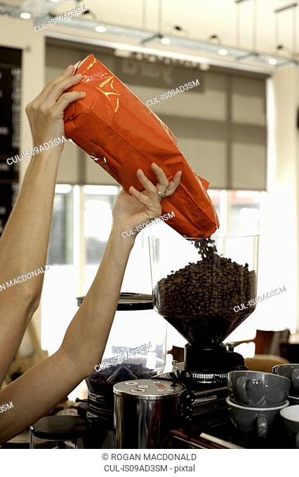 Barista pouring coffee beans into grinder