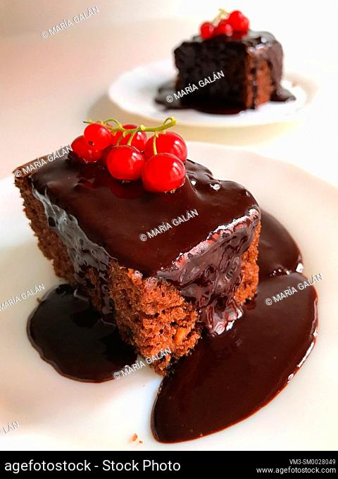 Chocolate cake with chocolate sauce and redcurrants