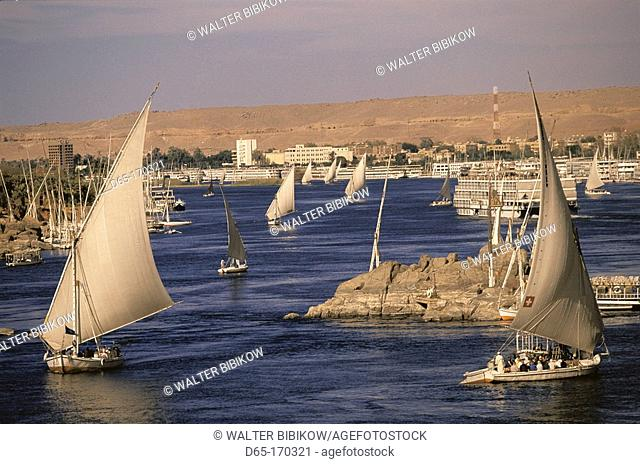 Feluccas on the Nile. Aswan. Egypt