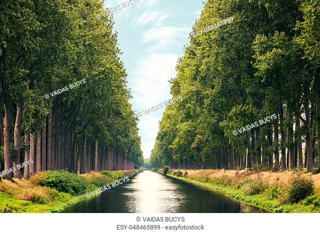 The Damme Canal surrounded by trees in summer in the Belgian province of West Flanders near the city of Brugge