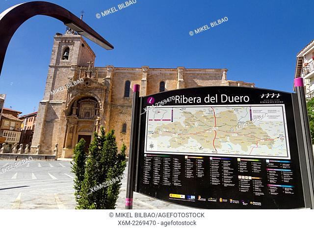 Santa Maria church. Roa de Duero. Burgos, Castile and Leon, Spain, Europe
