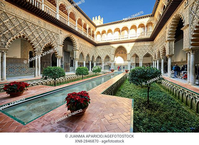 View of the Medieval garden and courtyard, the Patio de las Doncellas, of the Royal Palace, Sevilla, Spain, Europe